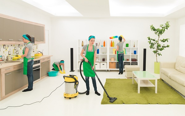 Domestic Cleaners Walthamstow